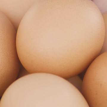 http://www.chippindalefoods.co.uk/wp-content/uploads/2017/05/eggs-.jpg